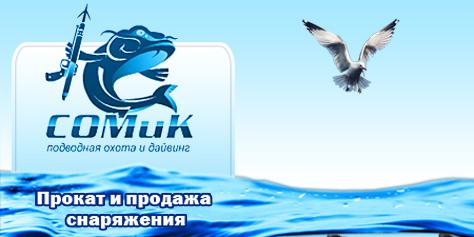 Сайт компании «Сомик»